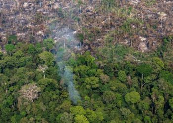PORTO VELHO, RONDONIA, BRAZIL - AUGUST 25:  In this aerial image, a section of the Amazon rain forest that has been decimated by wildfires is seen on August 25, 2019 in the Candeias do Jamari region near Porto Velho, Brazil. According to INPE, Brazil's National Institute of Space Research, the number of fires detected by satellite in the Amazon region this month is the highest since 2010.  (Photo by Victor Moriyama/Getty Images)