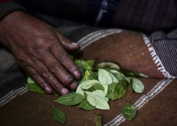 Bolivian shaman Don Juan Tres Estrellas reads coca leaves in El Alto, Bolivia, on October 15, 2020. - Aymara chamans use coca leaf reading, an ancestral Andean tradition, to predict the result of the October 18 elections in Bolivia. (Photo by RONALDO SCHEMIDT / AFP)