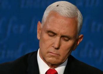 Mike Pence. Foto TWITTER